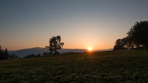 nature sunrise germany landscape deutschland natur landschaft sonnenaufgang schwarzwald blackforest badenwürttemberg landscapephotography naturfotografie südschwarzwald naturalphotography landschaftsfotografie wiechs