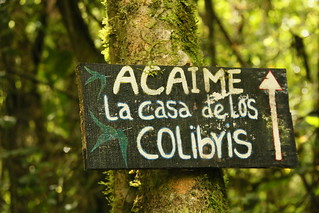 Las Casa de los Colibris, Colombia.