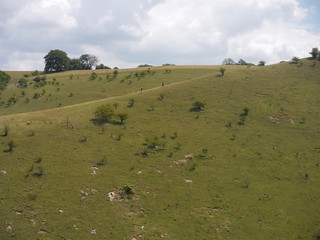 Two walkers on the alternative descent-route