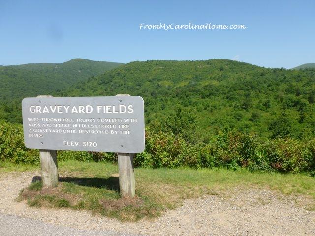 Graveyard Fields - marker