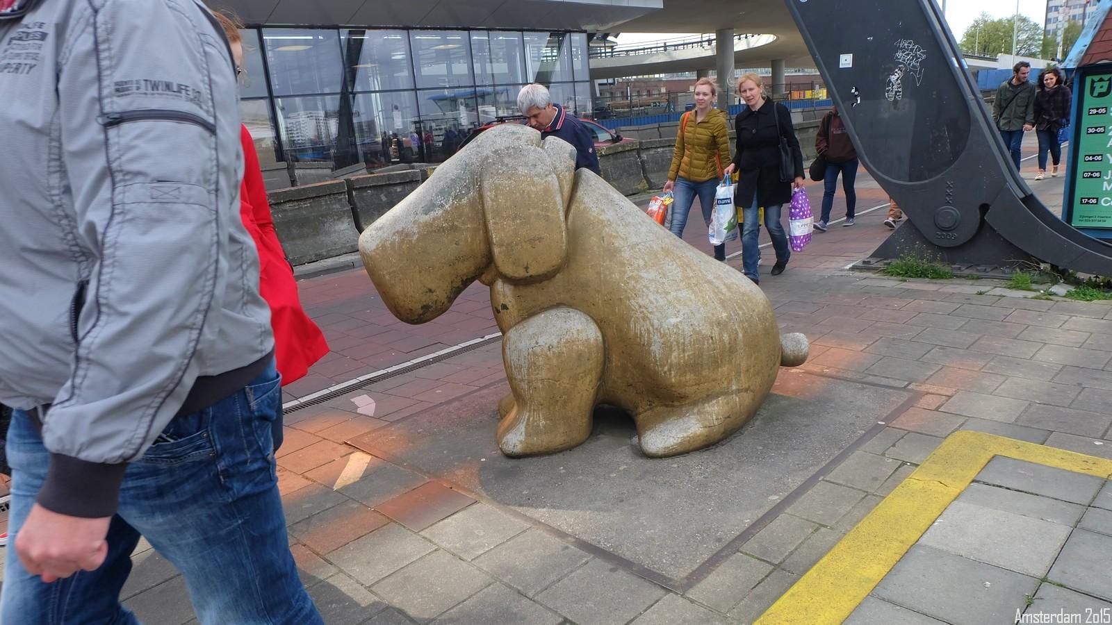 Dog, Amsterdam, Nederland