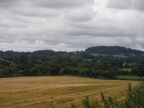 Barker's Hill from East Hatch