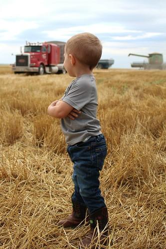 Z Crew: little farmer