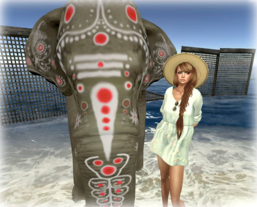 Blog_Zenith_016