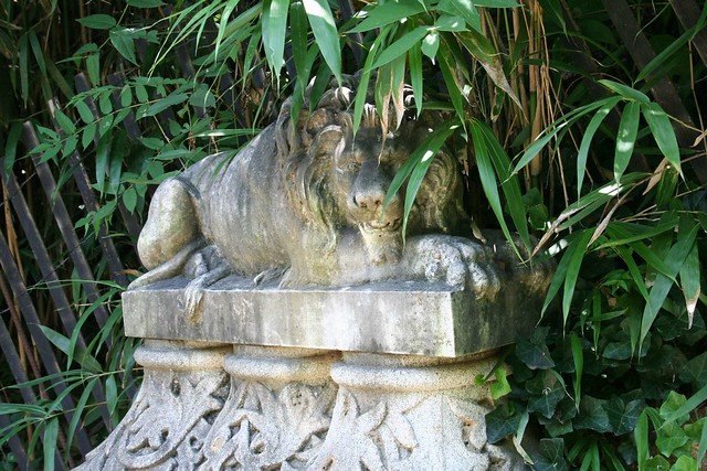 Maymont lion