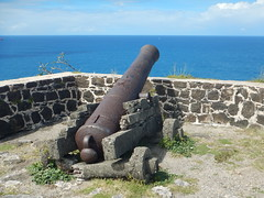 Canons in Fort Rodney