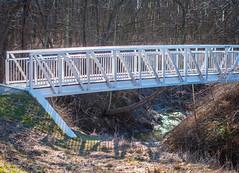 Lake Erie Bluffs Bridge