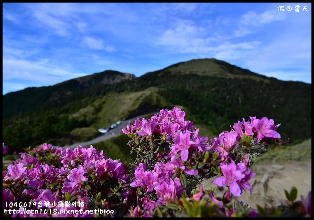 1040619合歡山攝影外拍DSC_1259