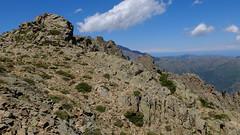Au col, avant la descente pour rejoindre le ruisseau de Vetta di Muro
