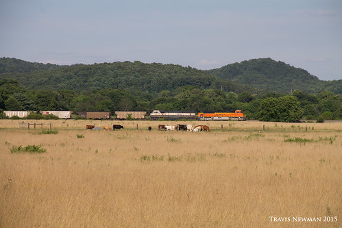 train ns north norfolk southern end coal bnsf emd sd70mac sd70ace