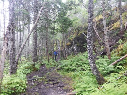 Terra Nova National Park - 4