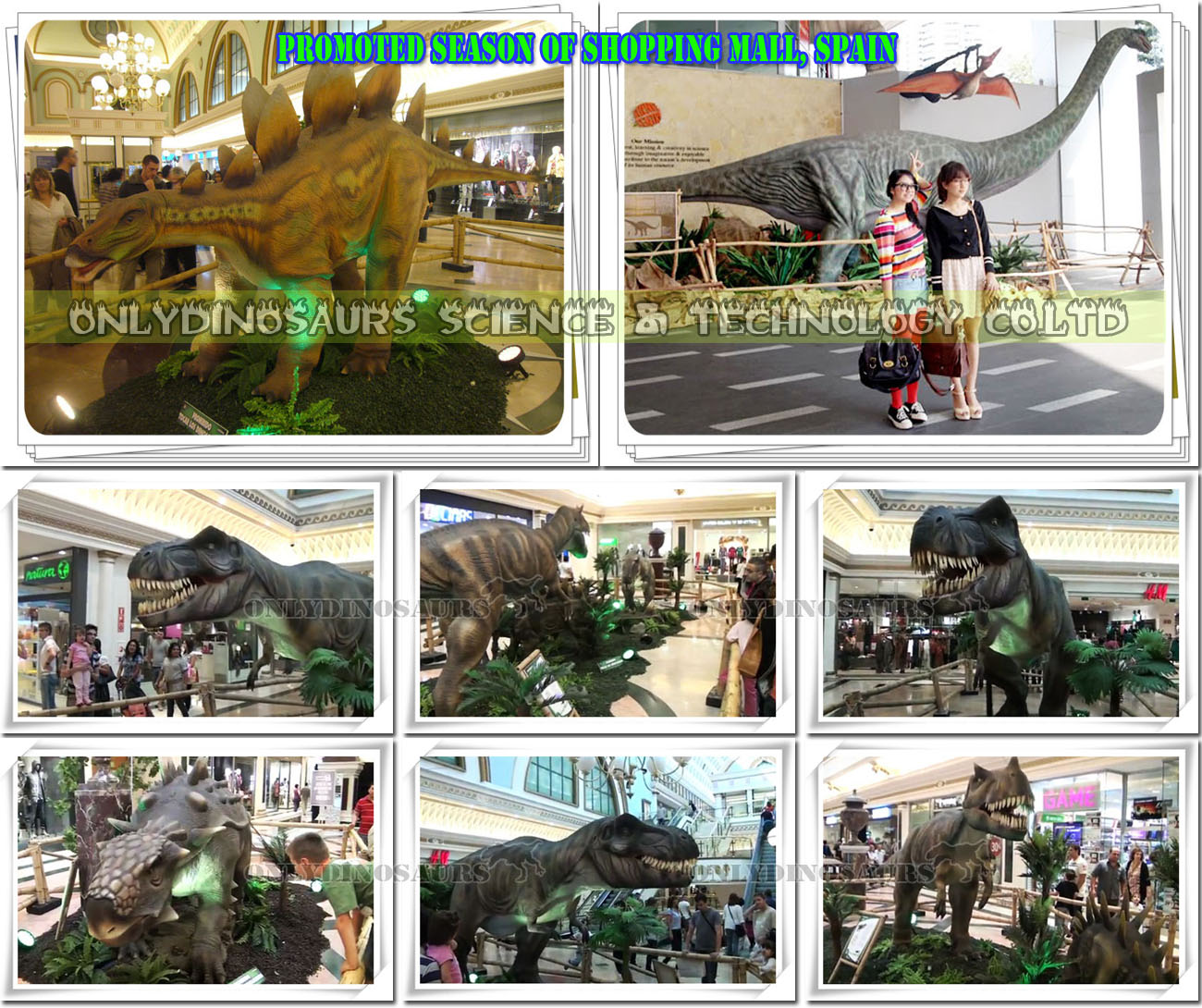 Dino Show for Mall Promotion Season