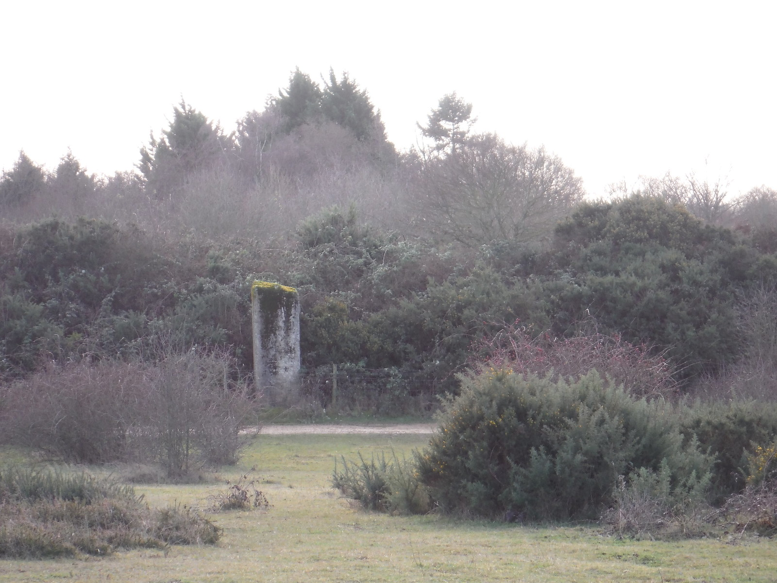 Greenham Common. The High Concrete Post mentioned in the text SWC Walk 34 Newbury Racecourse to Woolhampton (Midgham Station)
