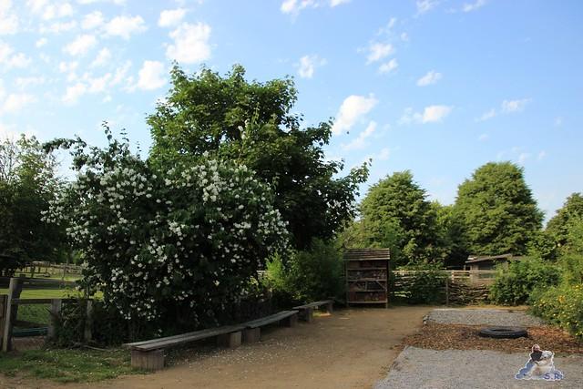 Tierpark Krüzen 03.07.2015  125