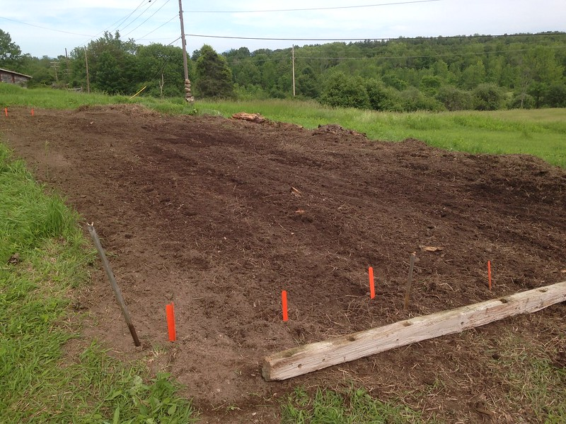 Rows marked and laid out