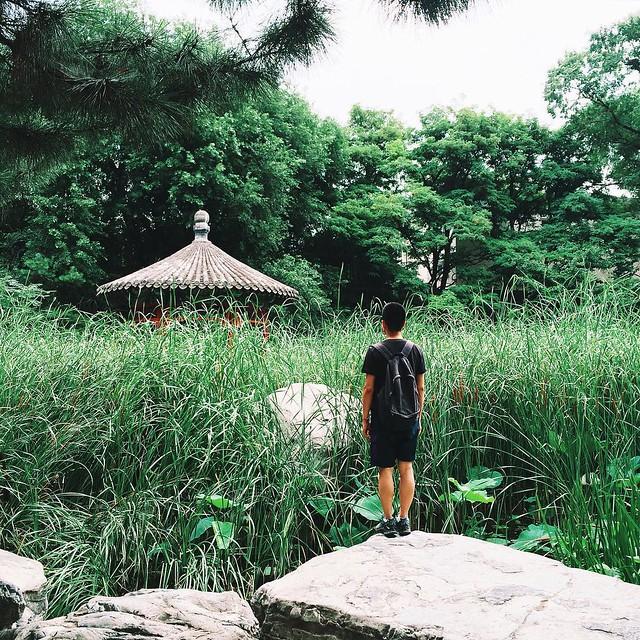 Summer is forever. #beijing