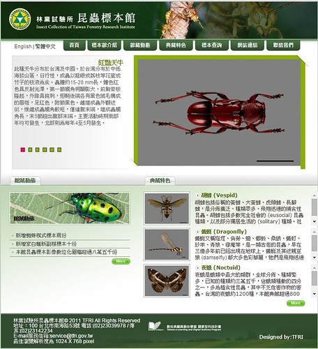 台灣森林昆蟲標本館網站首頁。(圖片來源:林試所)