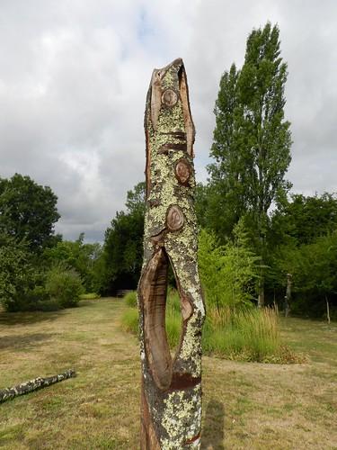 Déco sur vieil arbre