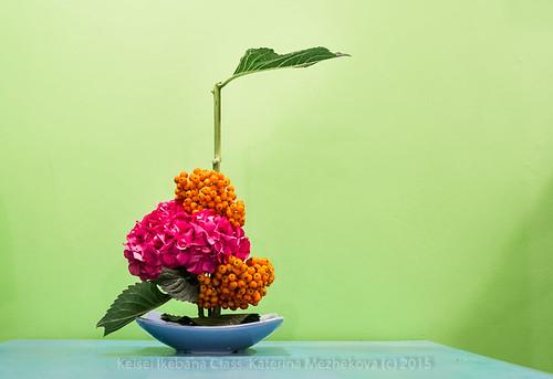 Hydrangea:Summer. Mass & Line Ikebana