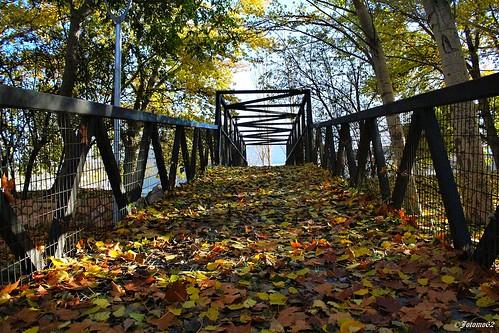 Puente sobre la Rambla