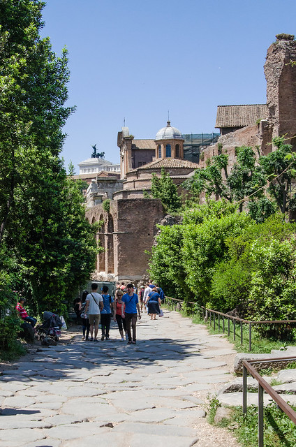 20150518-Rome-Roman-Forum-Via-Sacra-0254
