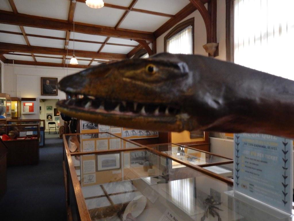 Terror in the museum Huntingdon Circular (long)