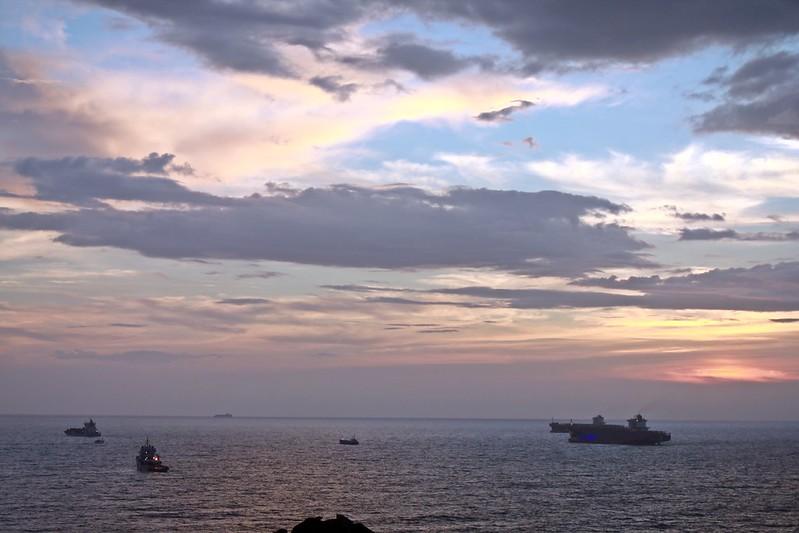 環島-西子灣-夕陽與猴子共舞 (39)