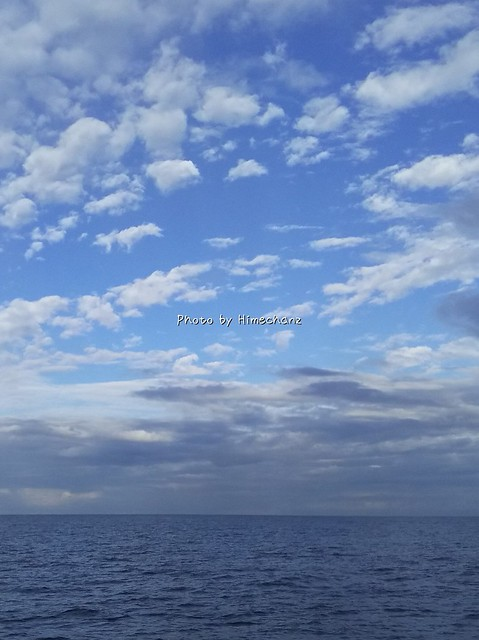 なんか空が新海誠さんの絵のようでした。