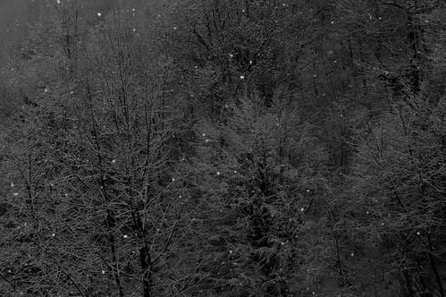 Winternacht #2
