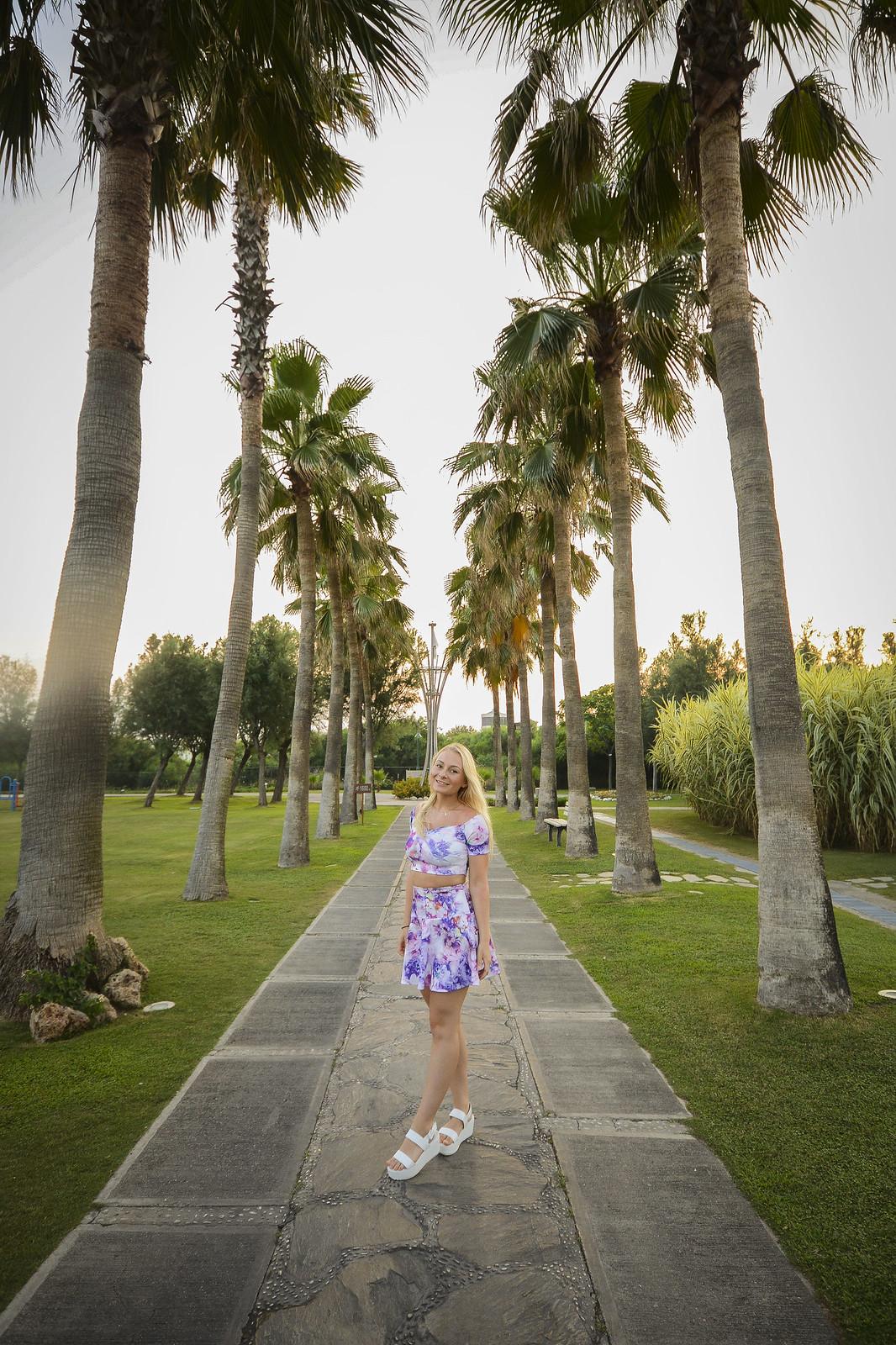 palmtrees_2