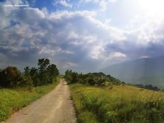 太陽の道 - La strada del sole