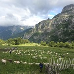 The shepherd's son. As we descended from the border between Montenegro and Albania, we encountered a hill dotted with shepherds' huts, just re-inhabited 10 days ago as families come up to the mountains from their lowland villages for the summer. We enjoye