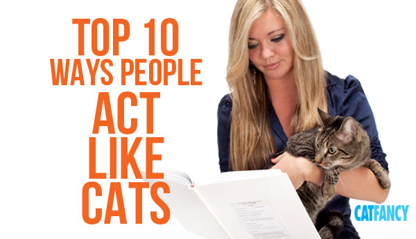 10-ways-people-act-like-cats