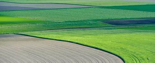 green field bayern nikon geometry line agriculture d4 caproni nikond4