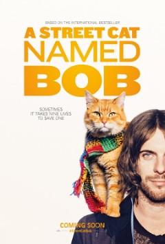Assistir Filme Um Gato de Rua Chamado Bob Legendado