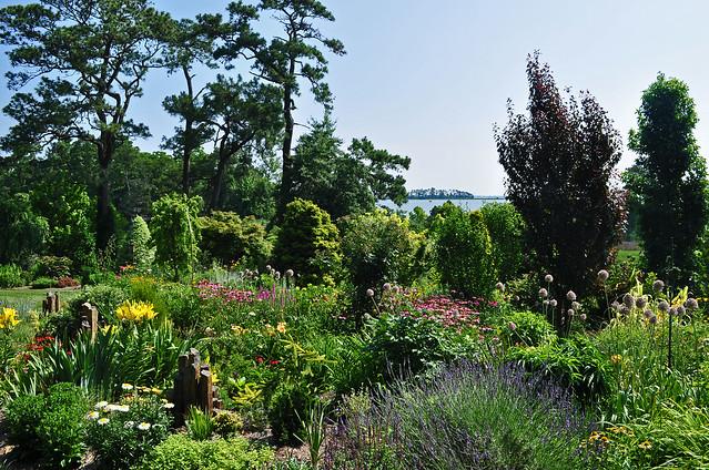Pinkham Garden (4)