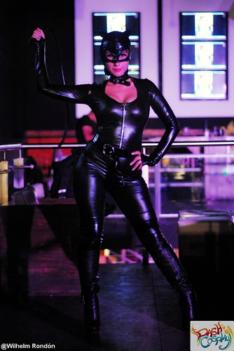 Catwoman Sexiest Costume - Dash Cosplay