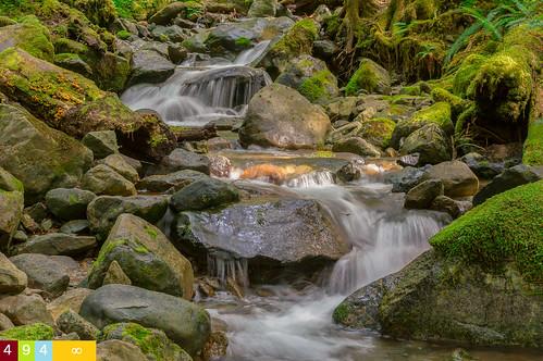 longexposure creek pacificnorthwest whatcomcounty mountbakersnoqualmienationalforest cascadesrange nf33 northcascadesregion
