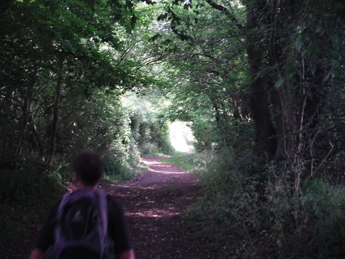 On the Icknield Way