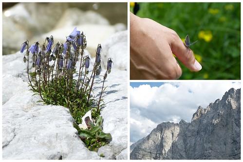 Karwendel 07_2015 2015-07-122