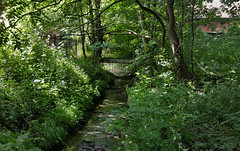 Brislington Brook