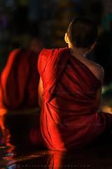 _MG_7416-le-19_04_2016_wat-thail-wattanaram-maesot-thailande-christophe-cochez-w