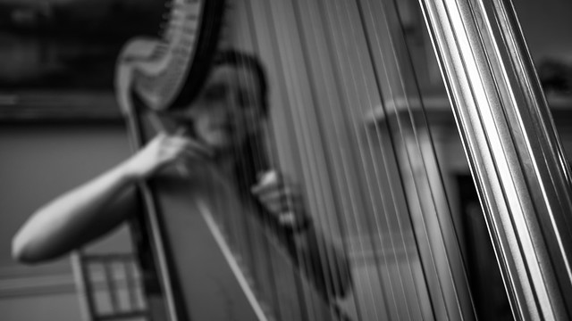 The harpist - Dublin, Ireland - Black and white photography