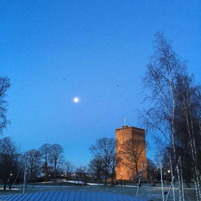 monday, moon, morning, helsingborg