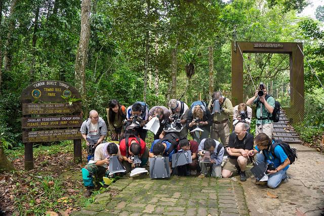 Borneo Bootcamp Tawau 2015 - DSC00304