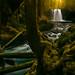 Mystical Koosah Falls by Matt Payne Photography