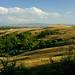 Small photo of Monteroni d'Arbia