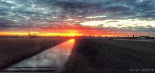 Morning glow I