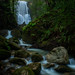 Berry Creek Falls by tompost