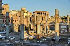 [2013-08-01] Rome 17 (Roman Forum)